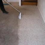carpet_1