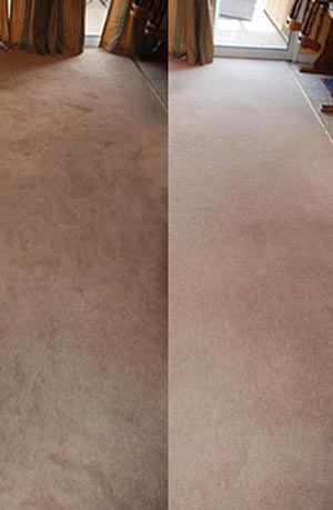 carpet before/after